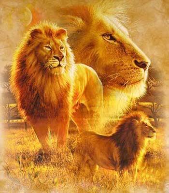 LionSpirit